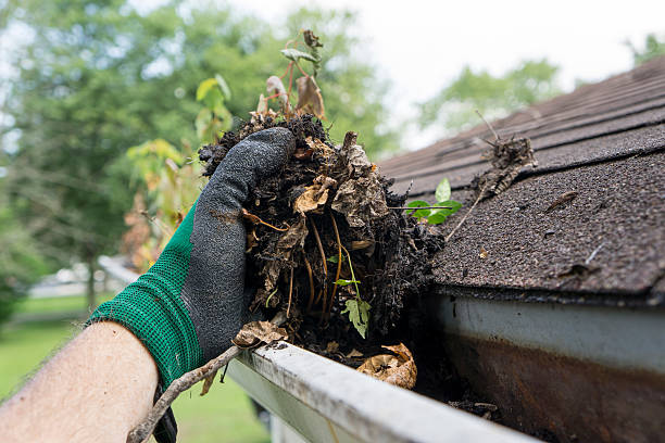 Man's Gloved Hand Clearing Dirt And Residue From Gutters Of House