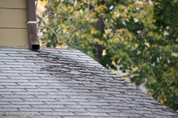 6 Causes Of Roof Damage In Florida